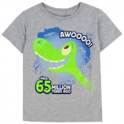 Disne The Good Dinosaur Spot and Arlo Grey Toddler Boys Shirt Houston Kids Fashion Clothing Store