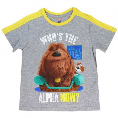 Secret Life As Pets Who's The Alpha Now Duke And Max Toddler Boys Shirt Houston's Kids Fashion Clothing