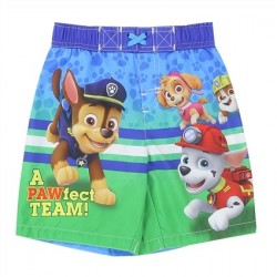 Nick Jr Paw Patrol A Pawfect Team Toddler Boys Swim Trunks