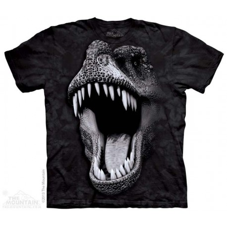 The Mountain T Rex Big Face Dinosaur Short Sleeve Youth Shirt At Houston Kids Fashion Clothing Store