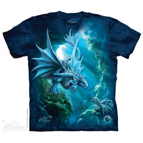 The Mountain Artwear Sea Dragon Age of Dragons Boys Shirt Size Chart Houston Kids Fashion Clothing