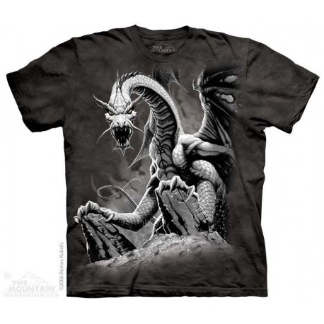 The Mountain Artwear Black Dragon Fantasy Boys Shirt Houston Kids Fashion Clothing Store