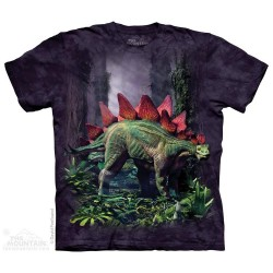 The Mountain Stegosaurus Short Sleeve Youth Shirt Houston Kids Fashion Clothing Store