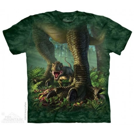 The Mountain Baby T Rex Short Sleeve Youth Shirt Housotn Kids Fashion Clothing Store