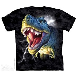 The Mountain Lightning T Rex Short Sleeve Youth Shirt Houston Kids Fashion Clothing Store