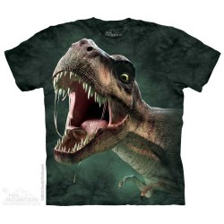 The Mountain T Rex Roar Short Sleeve Youth Shirt