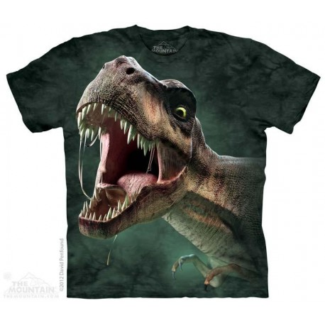 The Mountain T Rex Roar Short Sleeve Youth Shirt Houston Kids Fashion Clothing Store